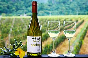 Wine Reviews at Top 25 Restaurants